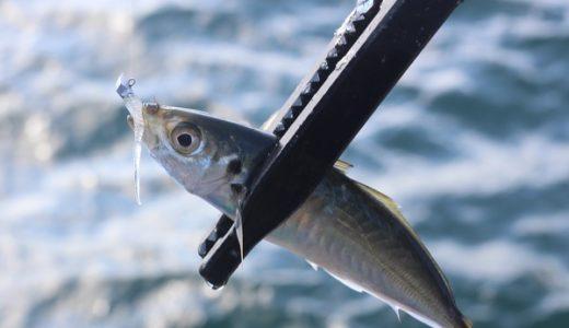 佐賀県アジングポイントまとめ!おすすめの釣り場を紹介