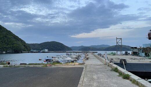 星鹿漁港と古江港で春のアオリイカエギング!ナイトゲームでキロアップゲット