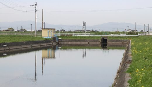 柳川クリークバス釣り情報!狙うべきポイントやおすすめの釣り場を紹介